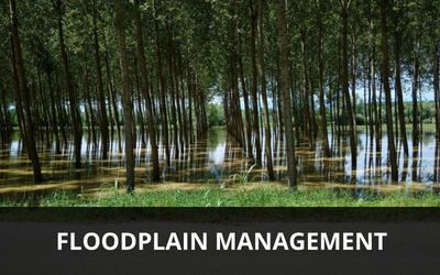 Floodplain Management Link Image